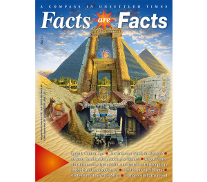 Facts are Facts No. 17